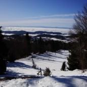 Pot: Podkrajnik – Kisovec – Mala planina