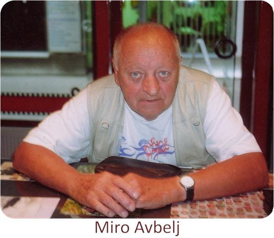 MAvbelj_C