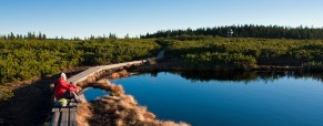 Vabilo na izlet MO: Lovrenška jezera, 31.5.2014