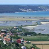 Vabilo na izlet MO: Odkrivamo slovensko Primorje, 14.6.2014