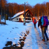 Krtina – Čemšeniška planina – Poročilo