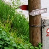 1.2.2015 -Izlet na Kopitnik