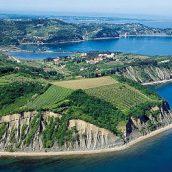 Izlet Mladinskega odseka na slovensko obalo