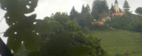 Vabilo na pohod: Pot med vinogradi – Haloze