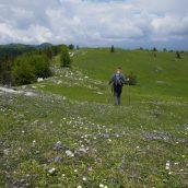 Poročilo: Menina planina