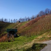 Vabilo na pohod: Štajerski griči
