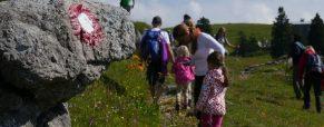 Poročilo: pohod na Veliko planino