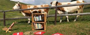 Knjižnica pod krošnjami