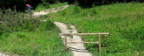 Ureditev vstopa poti