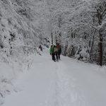 mo_pdd-izleti-zimsko_pohorje_jan_19-foto_matej_ogorevc (49)