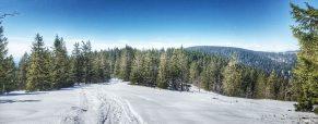 Vabljeni na zimsko Pohorje – izlet za osnovnošolce in mladino
