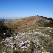 Vabilo: Izlet na Vremščico (1027 m)