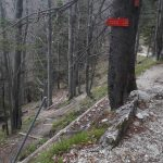 4.)Križišče nad Pl.Kisovec