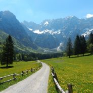 Vabilo: Planinska tura na Goli vrh (1.787m)