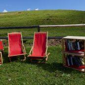 Knjižnica pod krošnjami in pravljice na Veliki planini