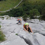Stene Karnijskih Alp