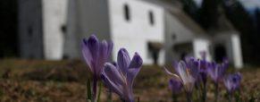 Vabilo: Meddruštveni pohod na Pohorje