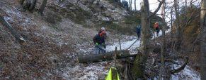 Čiščenje poti Stahovica – planina Kisovec