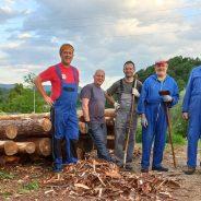 Beljenje lesa