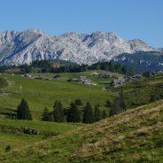 Po planinskih poteh na Veliko planino